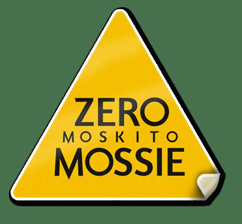 Inicio V2 29/07   Zero Mossie
